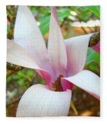 Magnolia Flowering Tree Art Prints White Pink Magnolia Flower Baslee Troutman Fleece Blanket