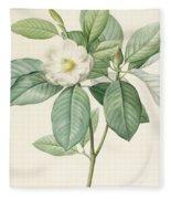 Magnolia Glauca Fleece Blanket