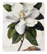 Magnolia Grandiflora Fleece Blanket