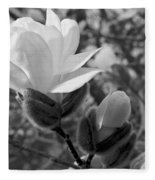 Magnolias In Spring Fleece Blanket