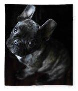 Magoo IIi Fleece Blanket