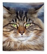 Maine Coon I Fleece Blanket