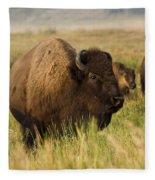 Majestic Bison Fleece Blanket