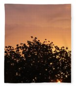 Majestic Dawn Fleece Blanket