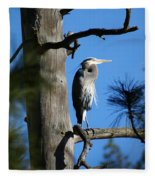 Majestic Great Blue Heron 1 Fleece Blanket