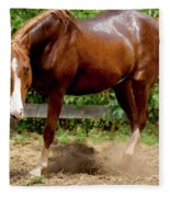 Majestic Horse Fleece Blanket
