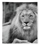 Majestic Male Lion Black And White Photo Fleece Blanket