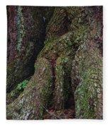 Majestic Tree Trunk Fleece Blanket