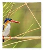 Malachite Kingfisher On Watch Fleece Blanket