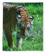 Malayan Tiger # 2 Fleece Blanket
