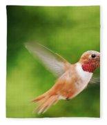 Male Allen's Hummingbird Fleece Blanket