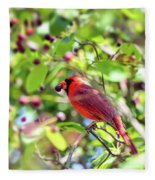 Male Cardinal And His Berry Fleece Blanket