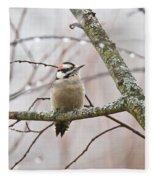 Male Downey Woodpecker Fleece Blanket