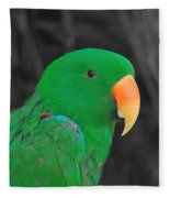 Male Eclectus Fleece Blanket