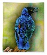 Male Fairy Bluebird Fleece Blanket