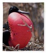 Magnificient Frigatebird  Fleece Blanket