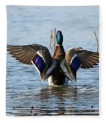 Male Mallard In Glorious Color  7515 Fleece Blanket