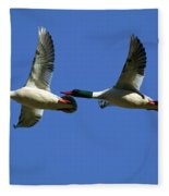 Male Mergansers In Flight Fleece Blanket