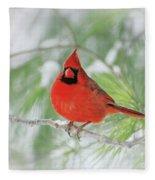 Male Northern Cardinal In Winter - 2 Fleece Blanket