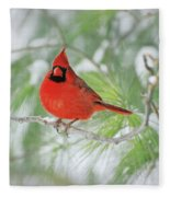 Male Northern Cardinal In Winter Fleece Blanket