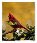 Male Northern Red Cardinal Fleece Blanket