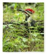 Male Pileated Woodpecker On The Ground No. 2 Fleece Blanket