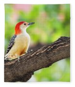Male Red-bellied Woodpecker Fleece Blanket