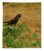 Male Red-winged Blackbird Singing Fleece Blanket