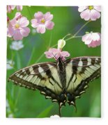 Male Tiger Swallowtail 5416 Fleece Blanket