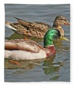 Mallard Pair Swimming, Waterfowl, Ducks Fleece Blanket
