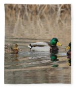 Mallards On The Pond Fleece Blanket