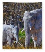 Mama And Baby Elephant Fleece Blanket