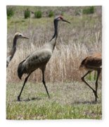 Mama And Two Juvenile Sandhill Cranes Fleece Blanket