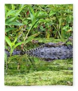 Mama Gator With Babies Fleece Blanket