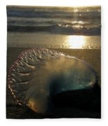 Man-o-war In Sunrise Fleece Blanket