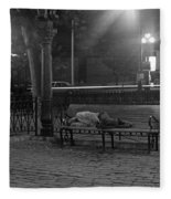 Man Sleeping On Bench Fleece Blanket