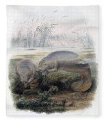 Manatees, Vulnerble Species Fleece Blanket