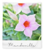 Mandevilla Pink Beauty Fleece Blanket
