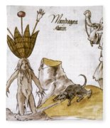 Mandrake And Herbalist Fleece Blanket