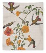 Mango Humming Bird Fleece Blanket