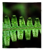 Manoa Fern Fleece Blanket