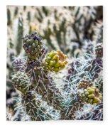 Many Stems Of Poky Small Cactus In Desert Fleece Blanket