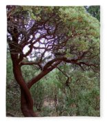 Manzanita Tree By The Road Fleece Blanket