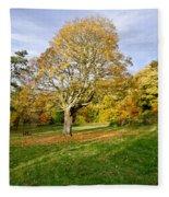 Maple Tree On The Slope. Fleece Blanket
