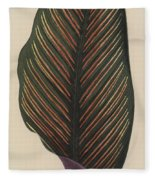 Maranta Regalis Fleece Blanket