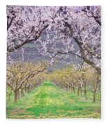March 28 2010 Fleece Blanket