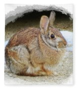 March Rabbit With Vignette Fleece Blanket