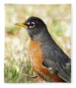 March Robin Fleece Blanket