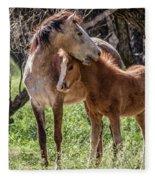 Mare And Colt Fleece Blanket