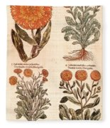 Marigolds Fleece Blanket